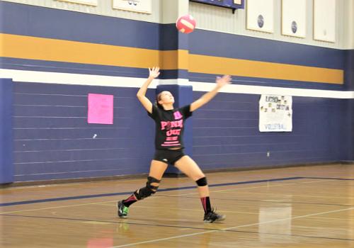 Волейбол. Игры для тренировки приема мяча