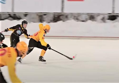 Хоккей с мячом. Методика обучения игре