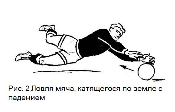 Ловля мяча в падении. Обучение игре в футбол