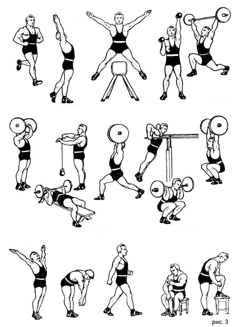 упражнения с тяжестями, которые развивают большую физическую силу