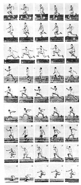 Техника тройного прыжка с разбега