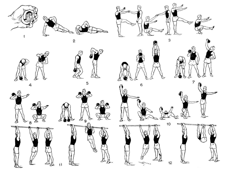 Борьба самбо. Упражнения для развития силы