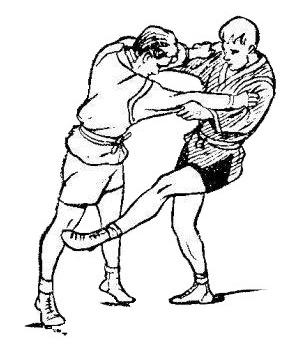 Борьба самбо. Передняя подсечка в колено