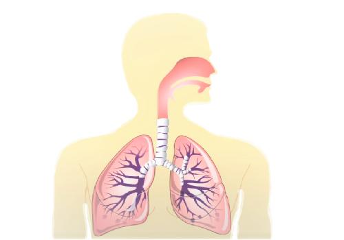 Лечебная физкультура при хроническом бронхите